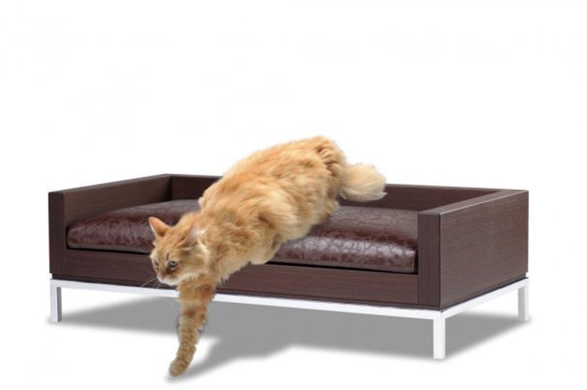 Foto l 39 arredamento di design per cani e gatti di forma for Arredamento per gatti